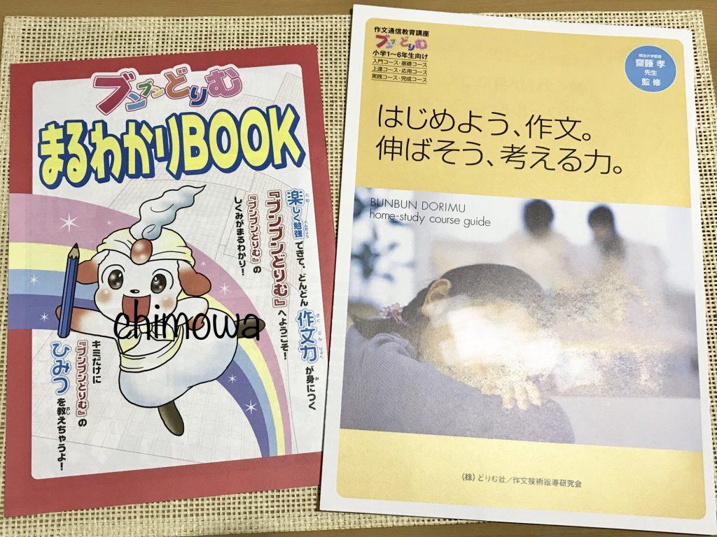 ブンブンどりむ保護者向けパンフレットと子供向け『まるわかりBOOK』の写真
